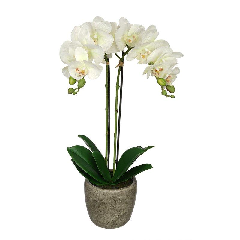 Synthetic Fabric Double-Stem Orchid Floral Arrangement in Pot