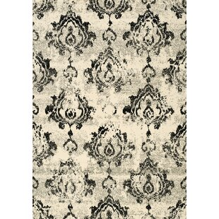 Affordable Ferrante Black/Cream Area Rug By Darby Home Co