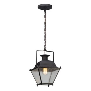 Darby Home Co Oakgrove 1-Light Outdoor Pendant