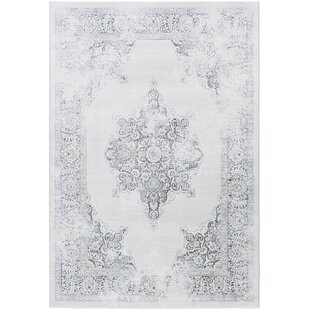 Affordable Pickrell Distressed White/Light Gray Area Rug By One Allium Way