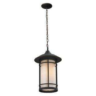 Bloomsbury Market McKew 1-Light Outdoor Hanging Lantern