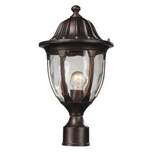 Amy 1-Light Lantern Head by Fleur De Lis Living