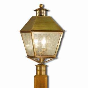 Araiza Outdoor 3-Light Lantern Head by Canora Grey