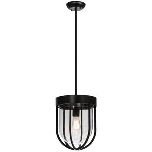 Meyda Tiffany Jaula 1-Light Urn Pendant