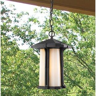 Loon Peak Pelzer 1-Light Outdoor Pendant