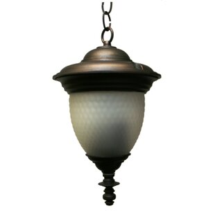 Buy clear Phillipstown 2-Light Outdoor Pendant By Alcott Hill