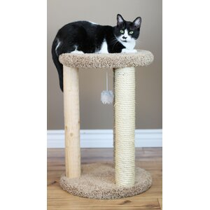 Delphine Cat Scratcher