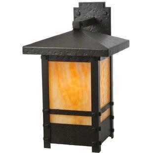 Best Choices 1-Light Outdoor Wall Lantern By Meyda Tiffany