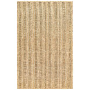 Desantiago Texture Brown Indoor/Outdoor Area Rug
