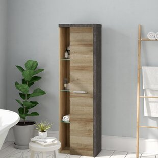 Corlew 48 X 160cm Wall Mounted Cabinet By Brayden Studio