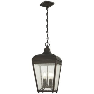 Find the perfect Duong 4-Light Outdoor Hanging Lantern By Charlton Home