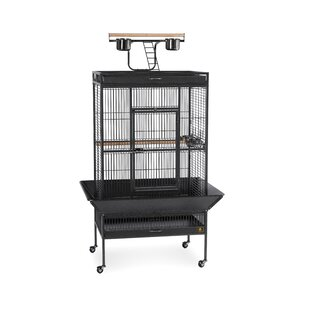 Large Reptile Cages Wayfair