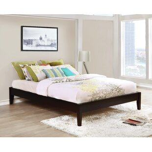 Buy clear Shandra Platform Bed by Latitude Run Reviews (2019) & Buyer's Guide