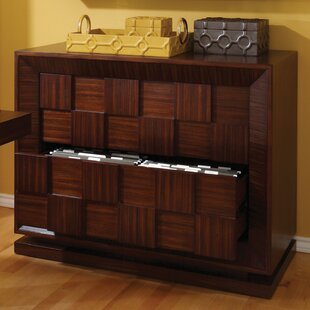 Demetrius 2-Drawer File Cabinet