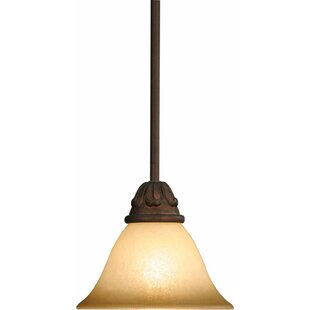 Volume Lighting Isabela 1-Light Cone Pendant