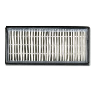 HEPAclean Replacement Air Filter (Set of 2)