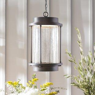 Laurel Foundry Modern Farmhouse Bergland 1-Light Outdoor Hanging Lantern