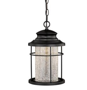 Alorton 1-Light Outdoor Hanging Lantern