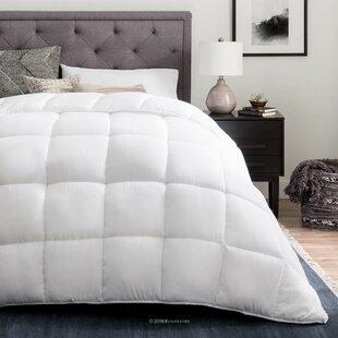 Siobhan All Season Single Comforter