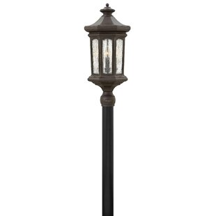Raley Outdoor 4-Light Lantern Head by Hinkley Lighting