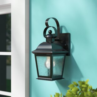 Darrah Traditional 1-Light Glass Shade Outdoor Wall Lantern