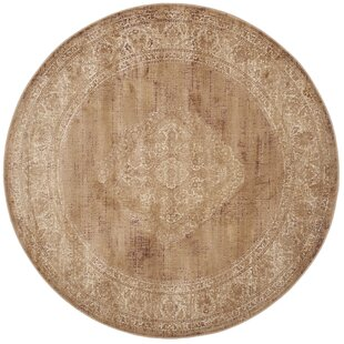 Todd Taupe Indoor Area Rug by World Menagerie