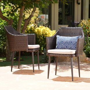 Brant Patio Dining Chair with Cushion (Set of 2)