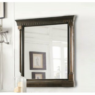 Affordable Price 24 Bathroom Vanity Mirror By Darby Home Co