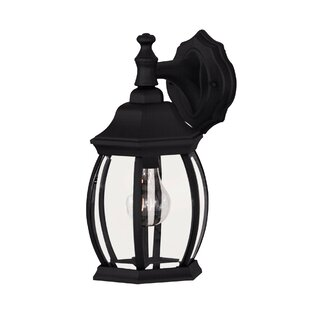Best Choices Betio 1-Light Outdoor Wall Lantern By Fleur De Lis Living