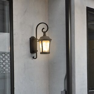 Aneda 1-Light Outdoor Wall Lantern