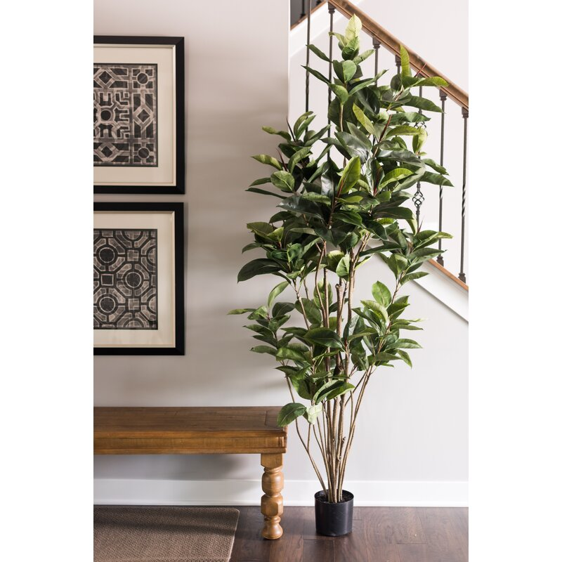 mercury row artificial foliage rubber tree in pot & reviews | wayfair