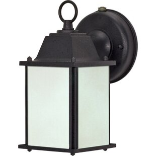 Callum 1-Light Outdoor Sconce