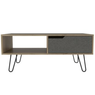Sunay Coffee Table With Storage By Ebern Designs