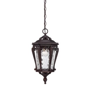 Best Berrios 1-Light Outdoor Hanging Lantern By Fleur De Lis Living