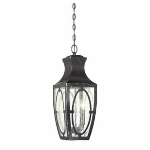 Reviews Ramires 2-Light LED Outdoor Hanging Lantern By Darby Home Co