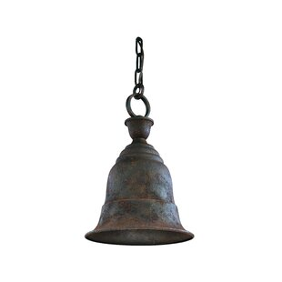 Darby Home Co Wadley 1-Light Outdoor Pendant