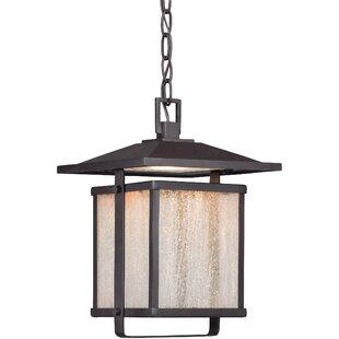Brayden Studio Olivarez 1-Light Outdoor Hanging Lantern