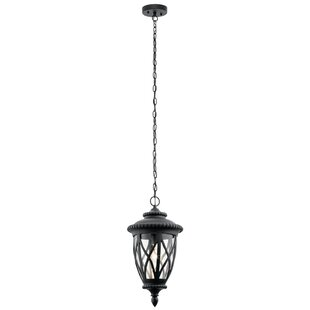 Dasie 1-Light Outdoor Hanging Lantern