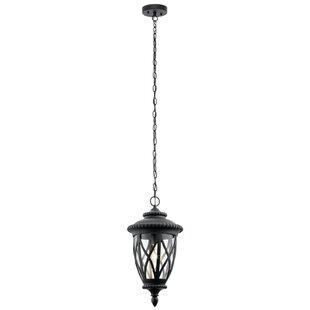 Dasie 1-Light Outdoor Hanging Lantern