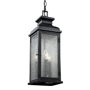 Darby Home Co Hazelwood 2-Light Outdoor Hanging Lantern