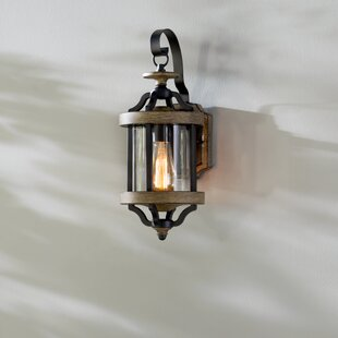 Elisabetta 1-Light Outdoor Wall Lantern