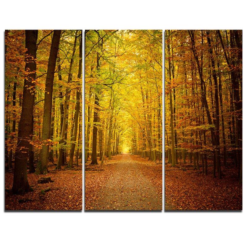 Designart Pathway In Green Autumn Forest 3 Piece Graphic Art On Wrapped Canvas Set Wayfair