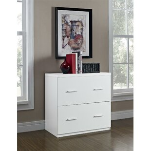 Latitude Run Magdalena 2 Drawer Lateral File Cabinet