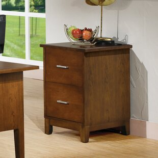 Darby Home Co Eaton 2-Drawer File