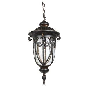Living District 1-Light LED Outdoor Hanging Lantern