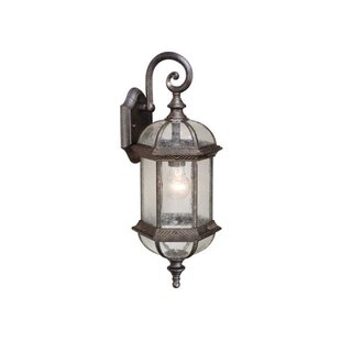 Looking for Brownfield 1-Light Outdoor Wall Lantern By Fleur De Lis Living