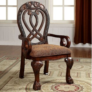 Wisser Arm Chair (Set of 2) by Astoria Grand