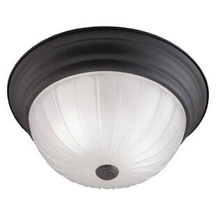 Thomas Lighting Ceiling Essentials 2-Light Flush Mount