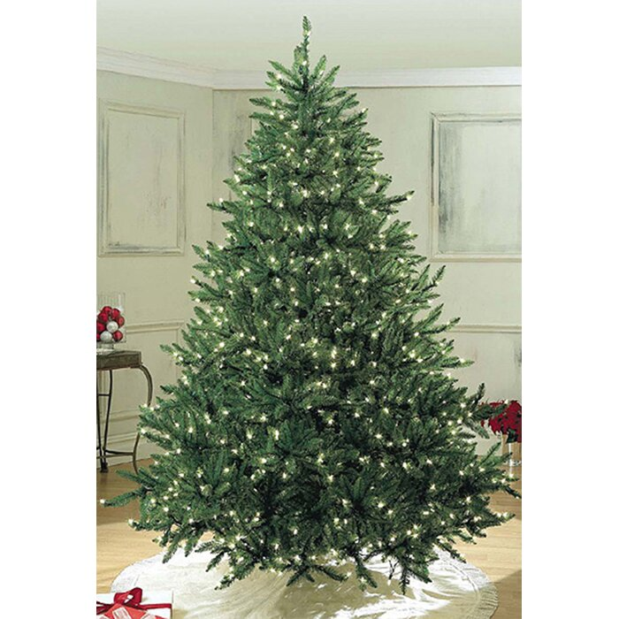 Sequoia Fir Pre Lit Led 7 5 Green Artificial Christmas Tree With 400 Clear White Lights