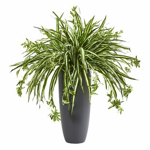 artificial spider plants | wayfair.ca Artificial Floor Plants
